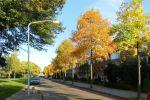 foto's uit de wijk Kerkakkers